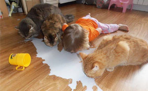 10+ Reasons Why You Shouldn't Leave Your Pets With Kids