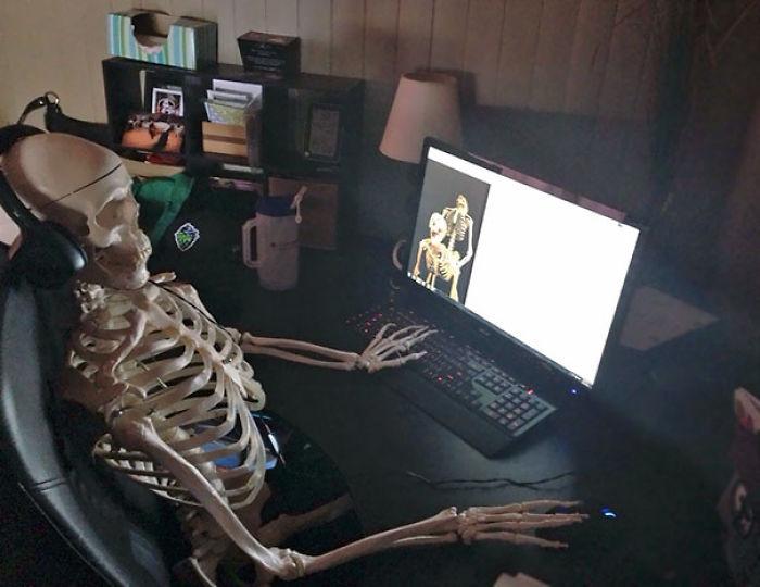 Mi esposa trajo a casa un esqueleto y me lo encontré así