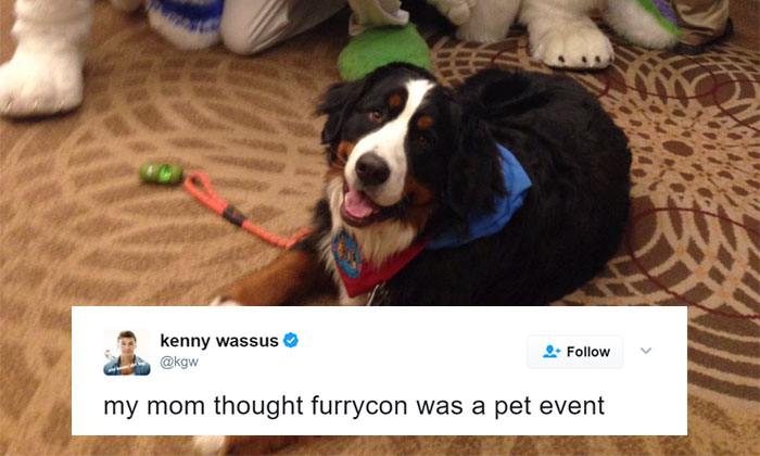 Woman Unaware That 'Furry Convention' Is Not For Pets, Takes Her Therapy Dog There And Becomes Famous