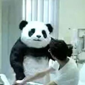 Helping Panda