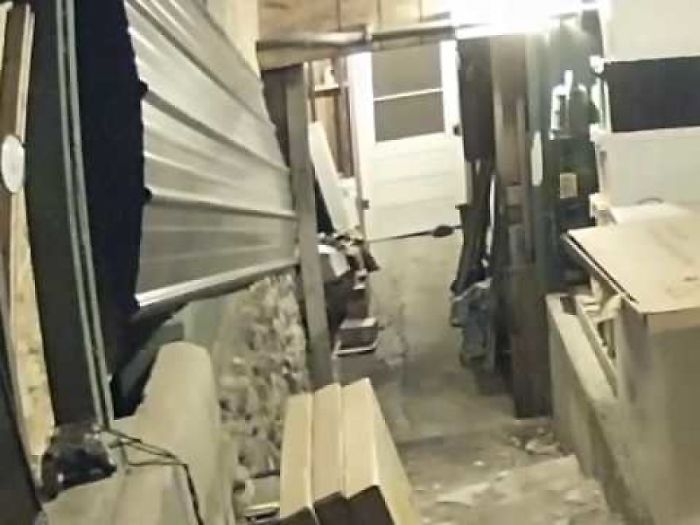 A Skunk Squeezes Under A Back Porch Door.