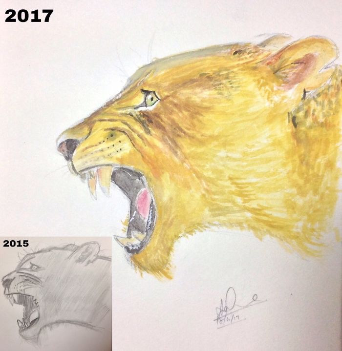 I Drew The Same Lioness Twice And It Does Really Show My Progress