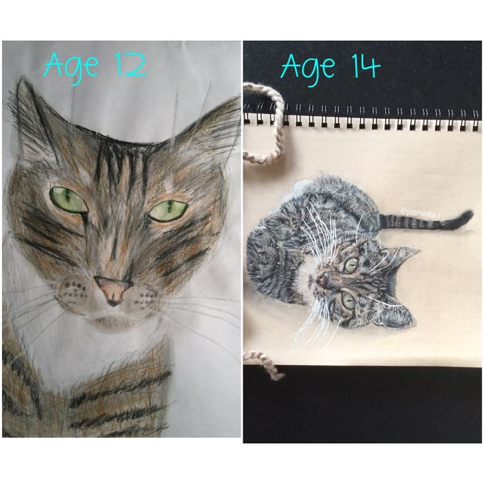 Drawing Of Ginger Two Years Ago And Now.