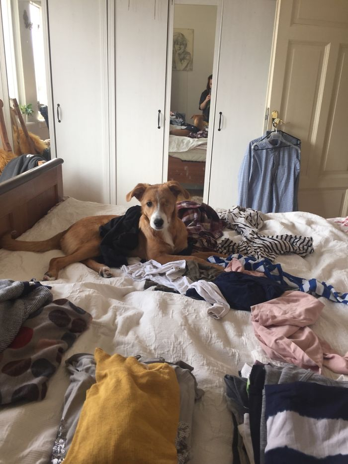 Helping You With The Laundry Mommy