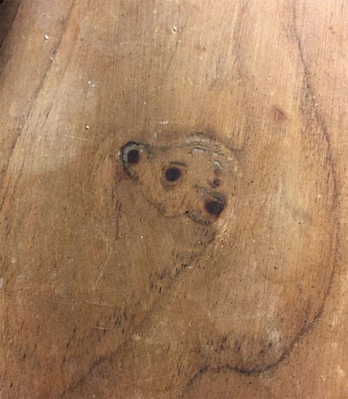 ¿Es un oso sonriente en la madera?