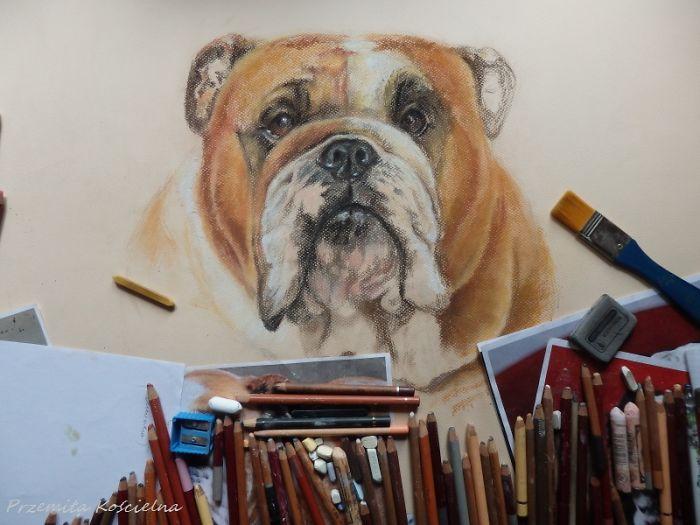 I Draw Portraits Of Dogs