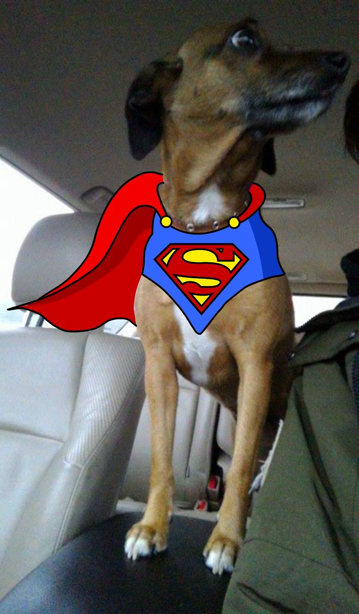 He Wants To Be A Superhero