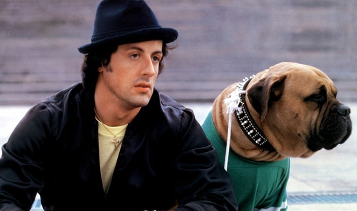 sylvester-stallone-dog-tribute-butkus-3