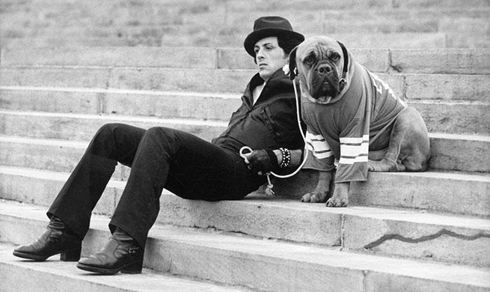 sylvester-stallone-dog-tribute-butkus-4