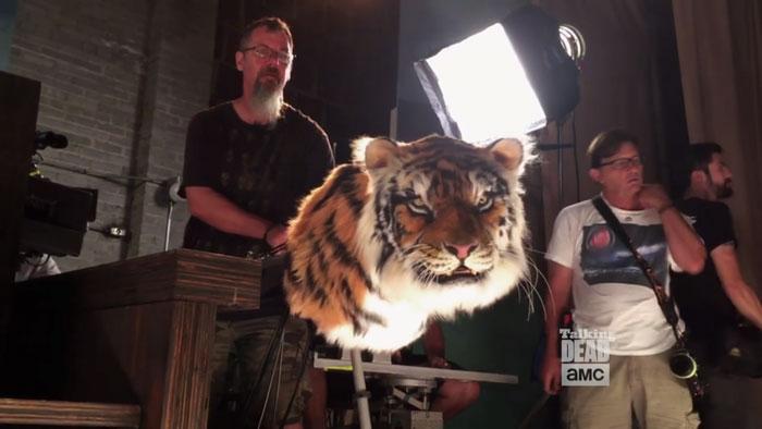 walking-dead-tiger-man-seven-season-shiva-6