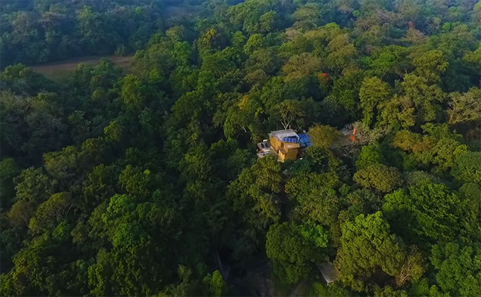 Couple Spends 26 Years Replanting A Rainforest They Bought In 1991, And Here's How It Looks Today