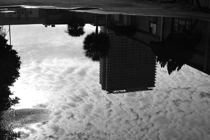 My Photos Of Reflections