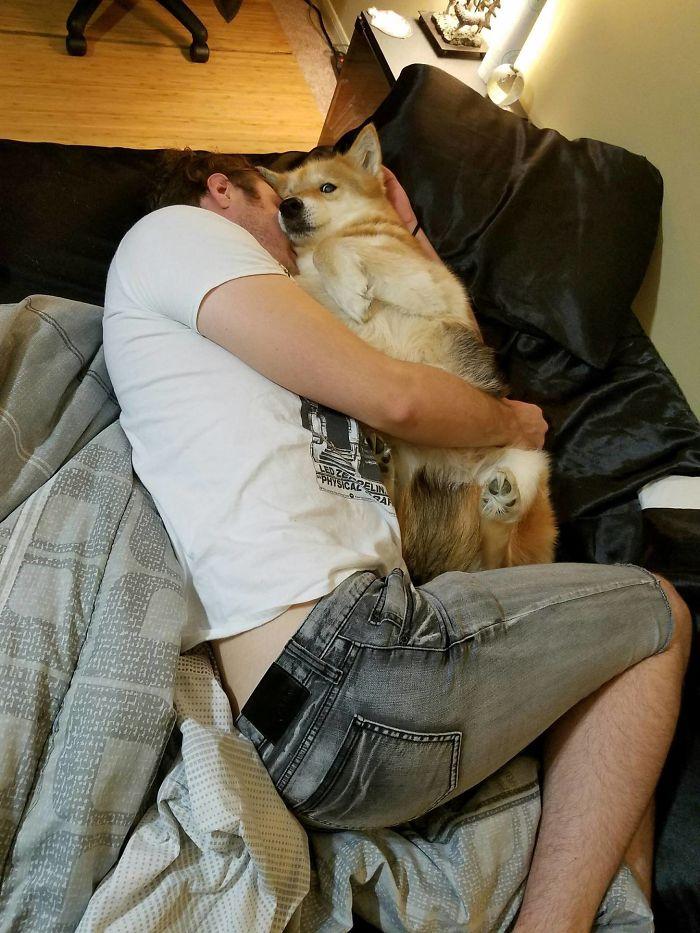 Me he encontrado a mi marido en la cama con una perra