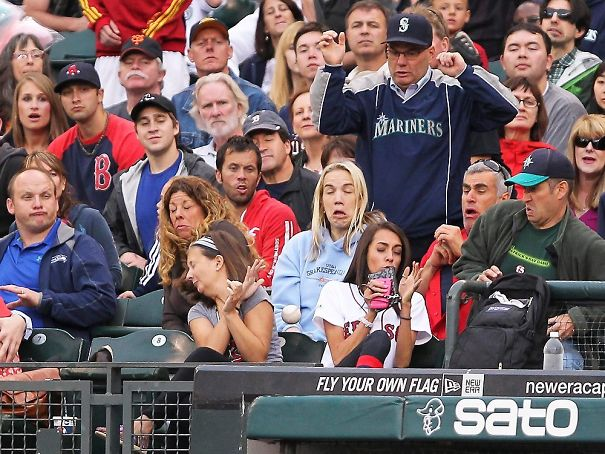 Baseball Chillin Amongst A Crowd Full Of Expressive Faces