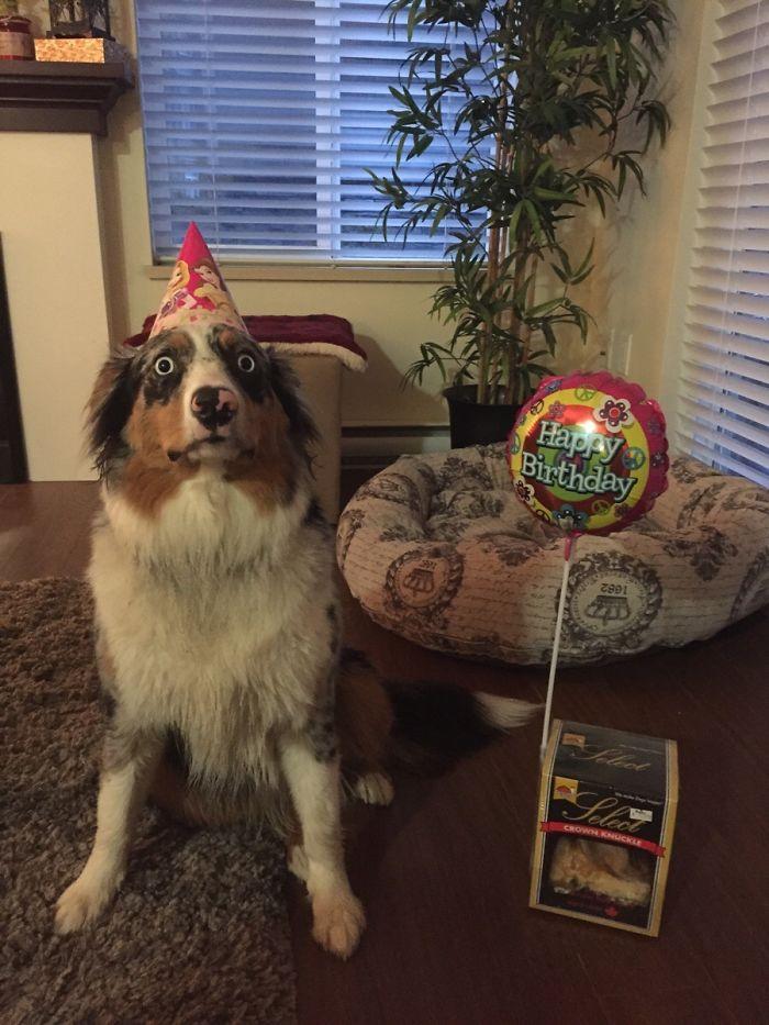 Está espantado de que sea su cumpleaños