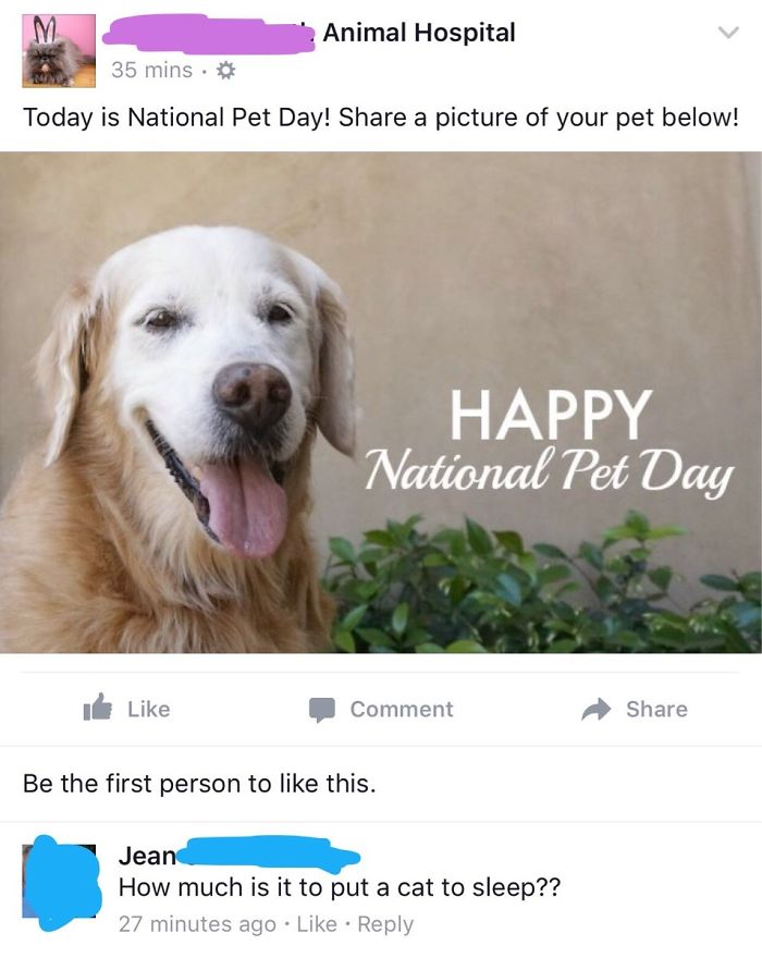 How Jean Celebrates National Pet Day