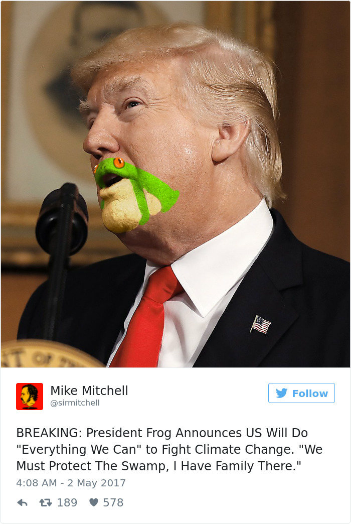 Donald Trump Frog