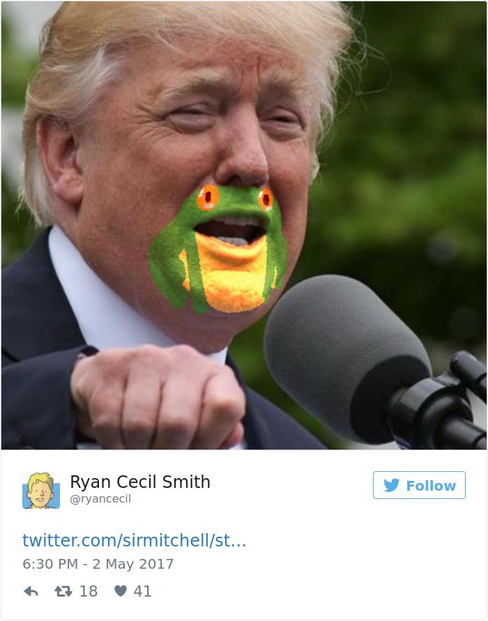 Funny-donald-trump-frog