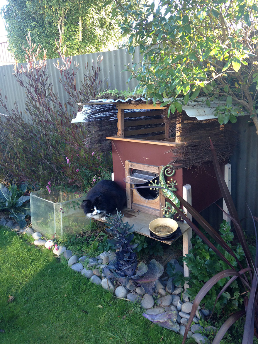 Outdoor Cat House Design Plans: I Created An Outdoor Cat House