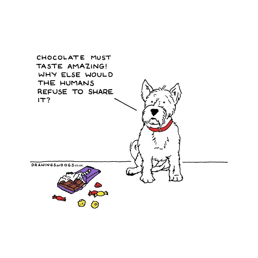 I Started Doing Amusing Drawings Of Dogs When Anxiety Forced Me To Drop Out Of A Philosophy Phd.