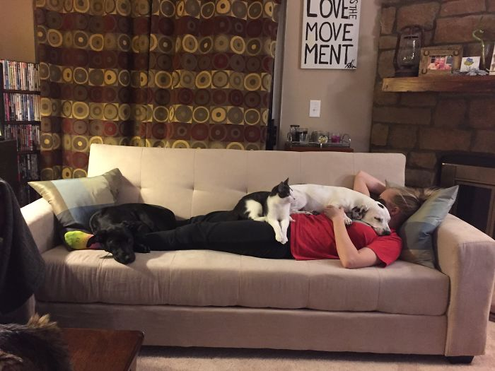 Not Technically On The Couch…