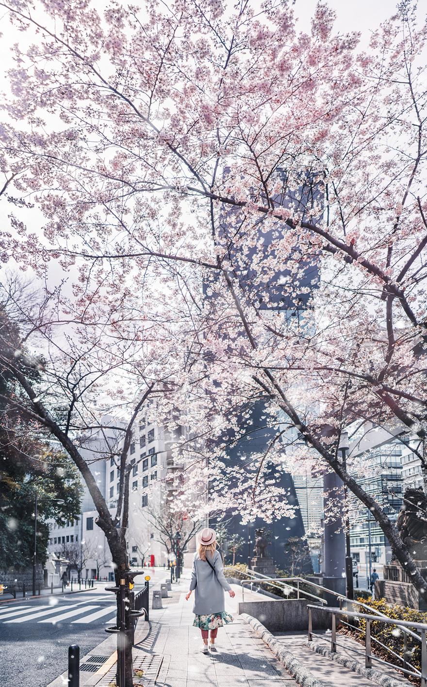Tokyo, Akasaka