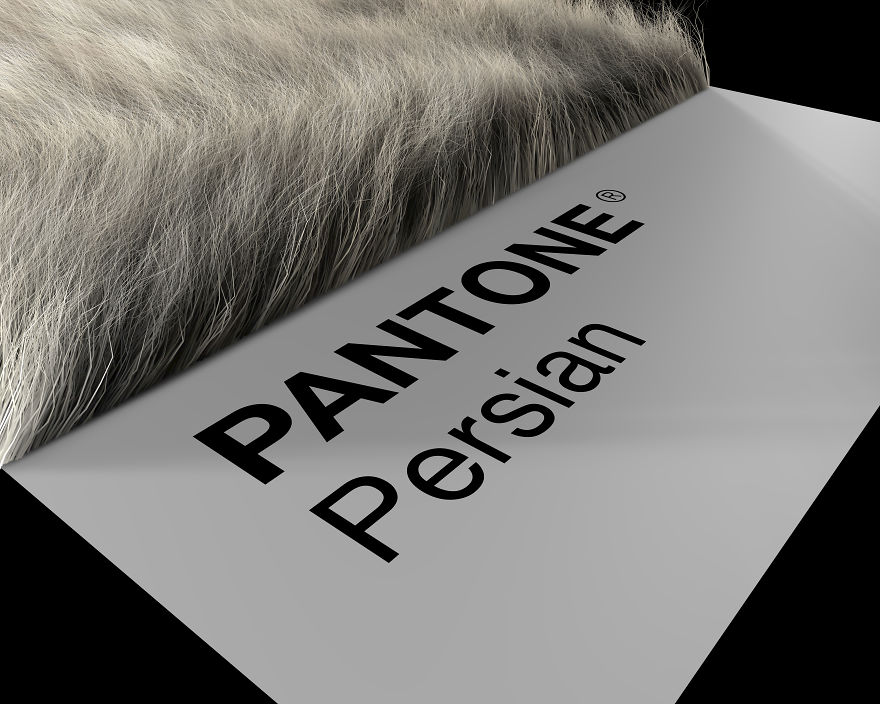 Persian Prospective