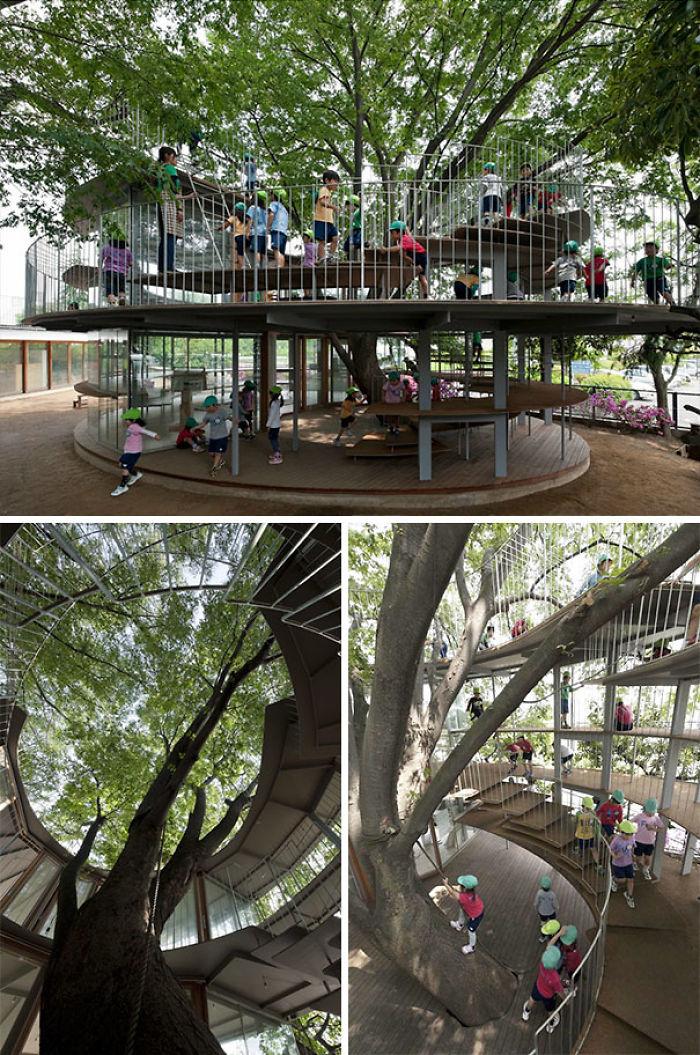 Patio de preescolar en Japón construido alrededor de un árbol