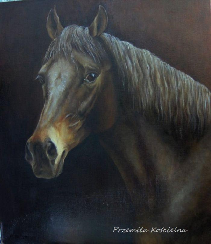 My Equestrian Art