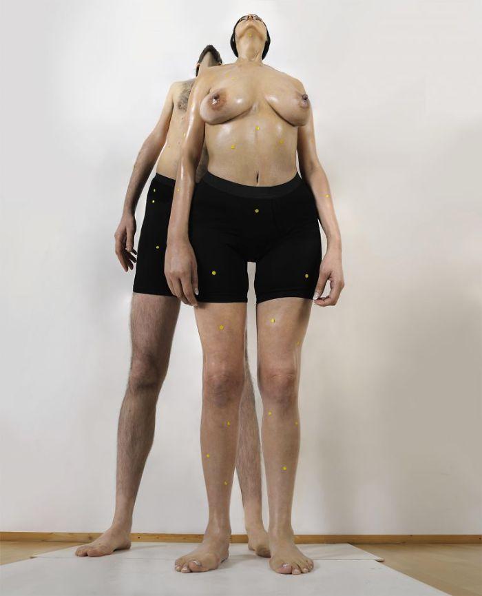 Human Dilatations