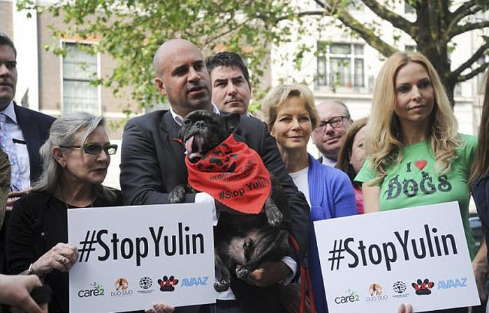 dog-meat-ban-yulin-festival-china- (21)