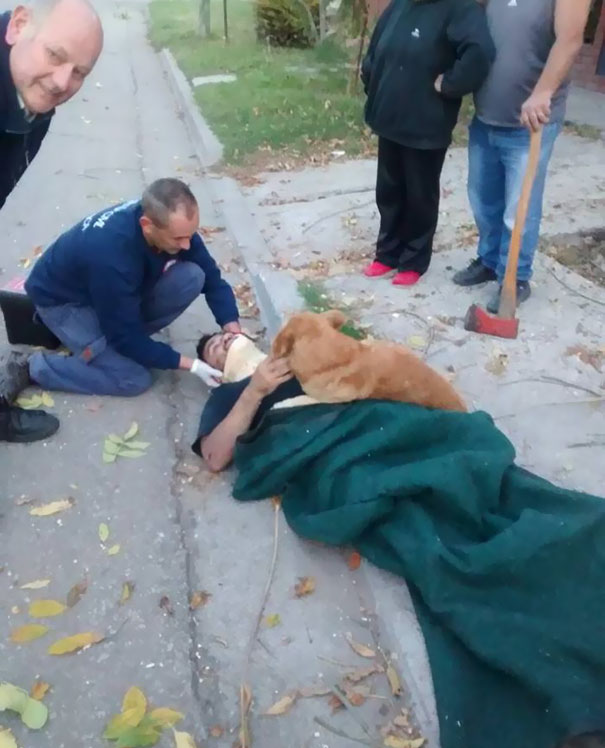 dog-refuses-leave-hugs-injured-owner-tony-argentina-2a