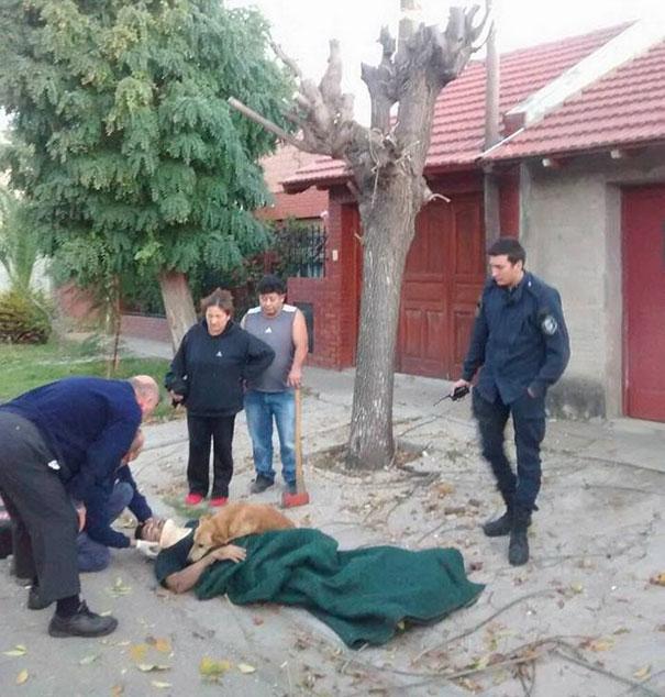 dog-refuses-leave-hugs-injured-owner-tony-argentina-3a