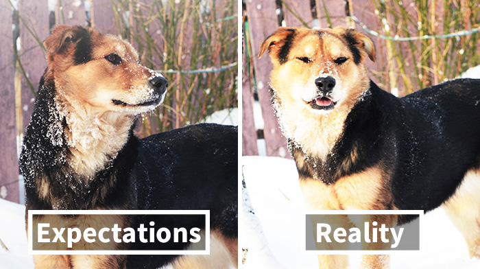 Expectations Vs. Reality: How You Imagine Your Photos To Look Like Versus How You Actually Look