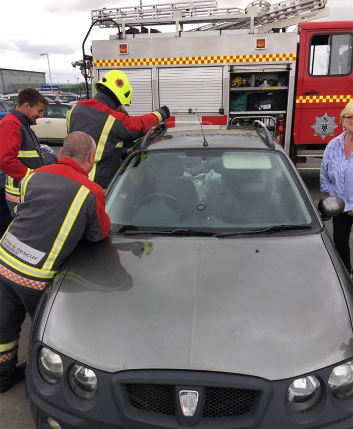 firemen-rescuing-laughing-toddler-from-locked-car-9