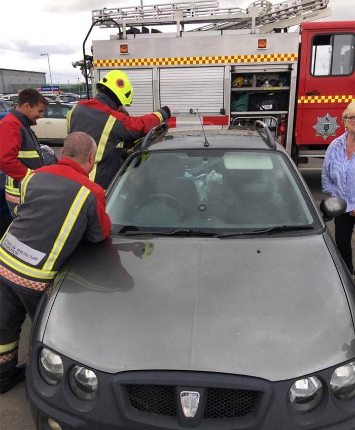 firemen-rescuing-laughing-toddler-from-locked-car-9