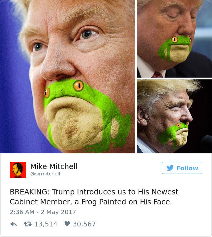 funny-donald-trump-frog-1