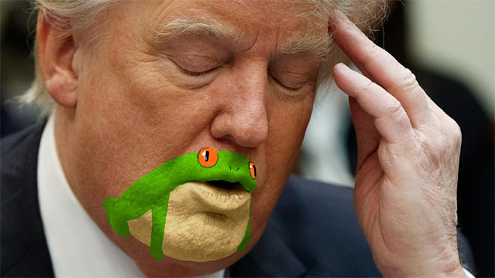 Somebody Noticed Donald Trump's Chin Looks Like A Frog, And Now People Can't Stop Trolling Him