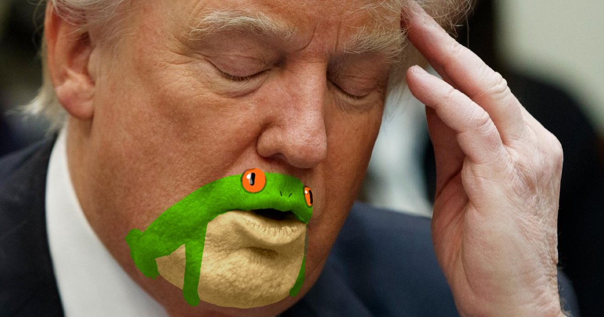 Somebody noticed donald trump s chin looks like a frog and now people can t stop trolling him