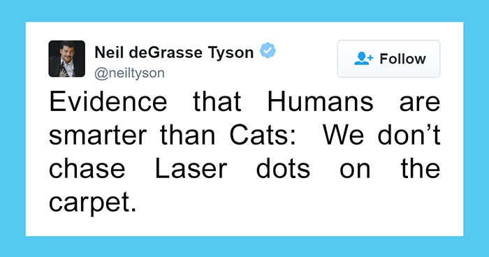 Neil deGrasse Tyson Tries To Make Fun Of Cats On Twitter, Gets Totally Destroyed By One