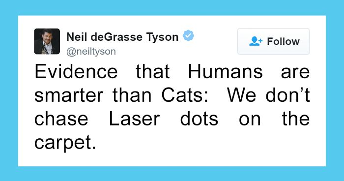 Neil deGrasse Tyson Tries To Make Fun Of Cats On Twitter