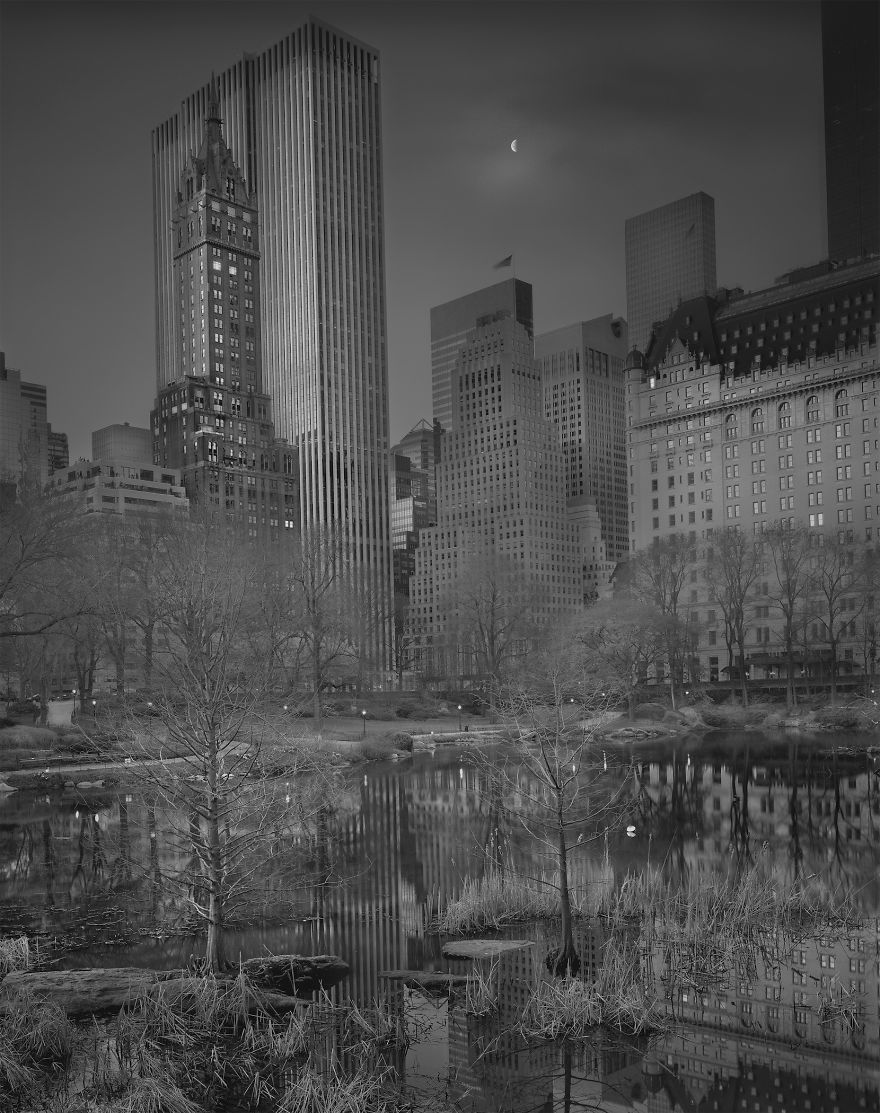 Half Moon, 2009