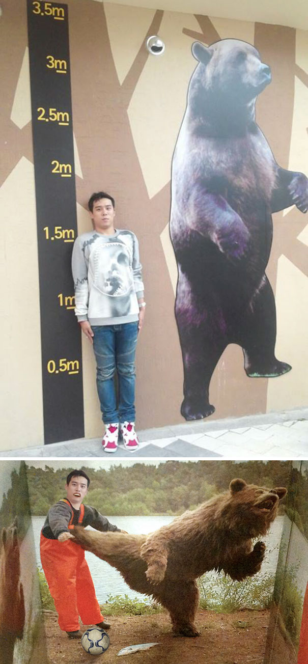 I Need To Be Taller Than The Bear