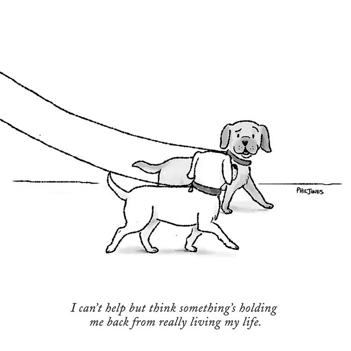 this cartoonist got rejected by the new yorker so he decided to
