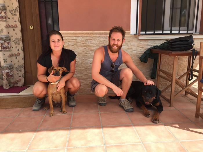trusted-housesitters-site-travel-world-take-care-pets-9