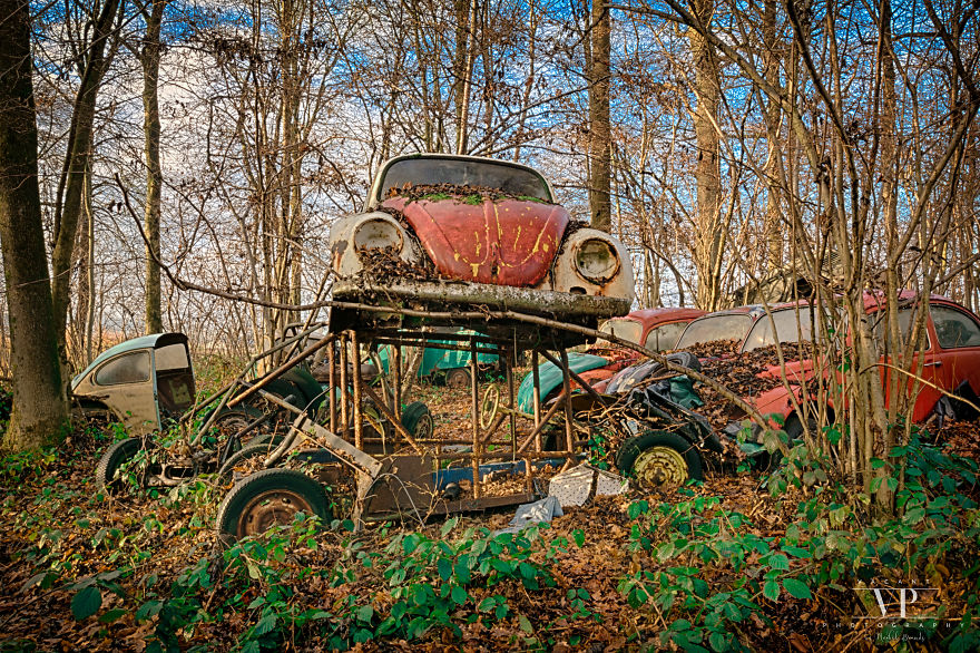 I Photographed Old Cars Lost In The Woods