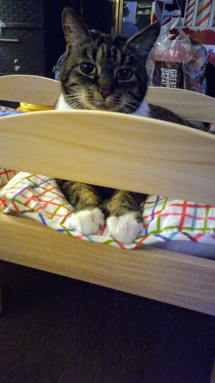 I Think She Likes Her Ikea Bed