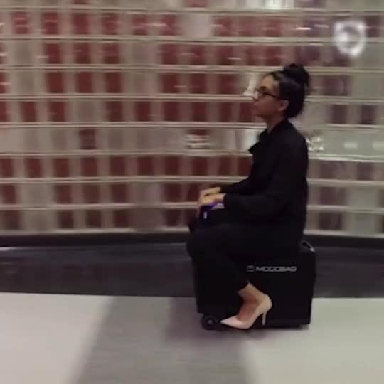 Luggage that you can ride bored panda for Motorized ride on suitcase