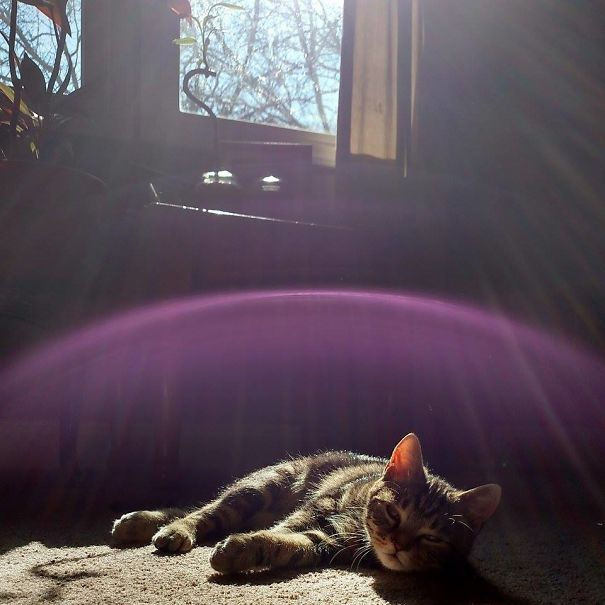 Popeye And His Magical Sun Screen