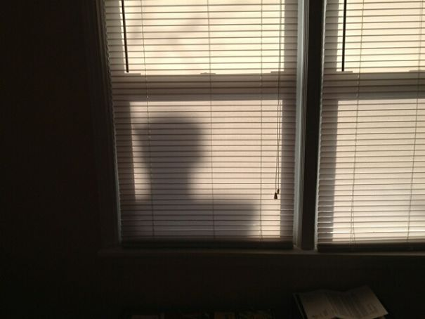 Every Morning My Friend Wakes Up To This Shadow In His Window. Turns Out It's His Neighbour's Chimney